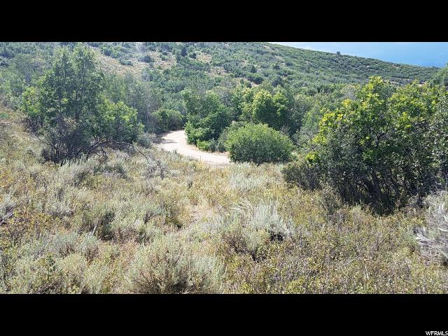 1775 S BEAVER BENCH RD Heber City, UT 84032 - MLS #: 1473203
