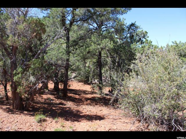 Additional photo for property listing at Address Not Available  Central, Utah 84722 États-Unis