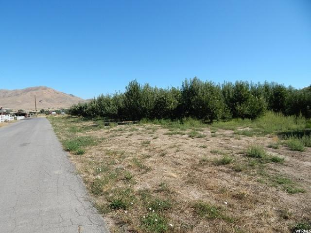 Additional photo for property listing at 71 S 600 E 71 S 600 E Genola, Utah 84655 États-Unis