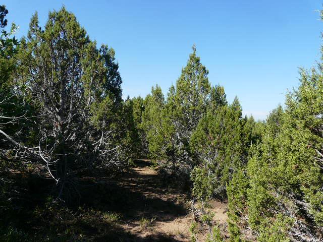 土地,用地 为 销售 在 11700 E 14800 N 11700 E 14800 N Mount Pleasant, 犹他州 84647 美国