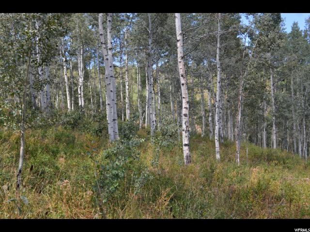 2481 FORESTMEADOW RD Wanship, UT 84017 - MLS #: 1477118