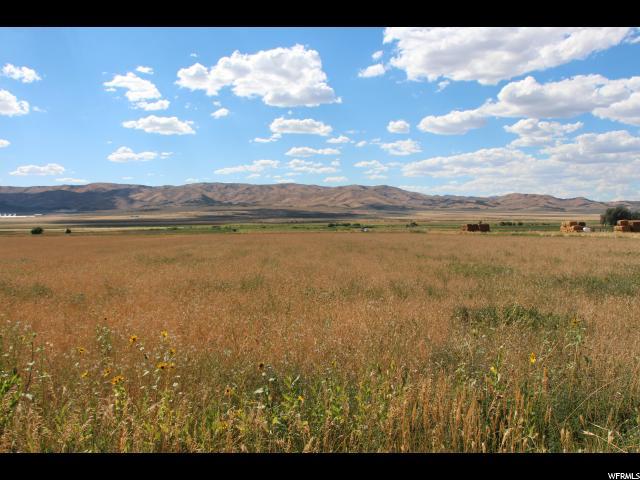 Terrain pour l Vente à 1554 N OLD HWY 91 W 1554 N OLD HWY 91 W Mona, Utah 84645 États-Unis