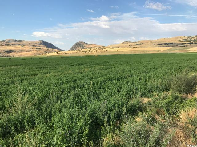 Land for Sale at 7400 W 7400 N Newton, Utah 84327 United States