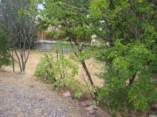 Additional photo for property listing at 310 N CENTER 310 N CENTER Elsinore, 犹他州 84724 美国