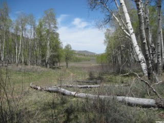 Additional photo for property listing at 1 S 1 W 1 S 1 W Scofield, Utah 84526 États-Unis