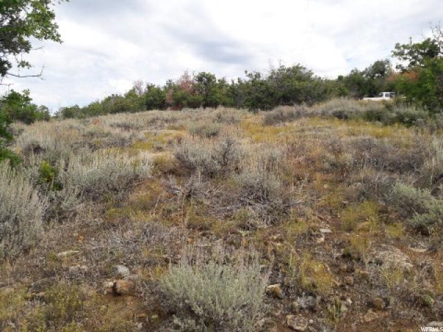 土地,用地 为 销售 在 Address Not Available 印第安诺拉, 犹他州 84629 美国