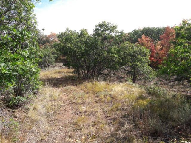 Additional photo for property listing at Address Not Available  Indianola, Utah 84629 États-Unis