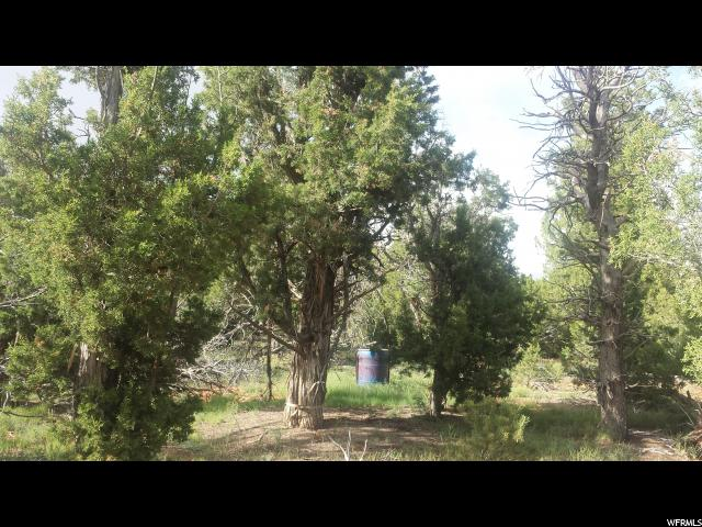 497 CEDAR POINT RD Monticello, UT 84535 - MLS #: 1485254
