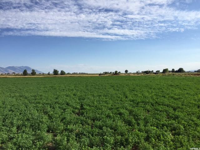 Land for Sale at 5031 W 8800 N 5031 W 8800 N Elwood, Utah 84337 United States