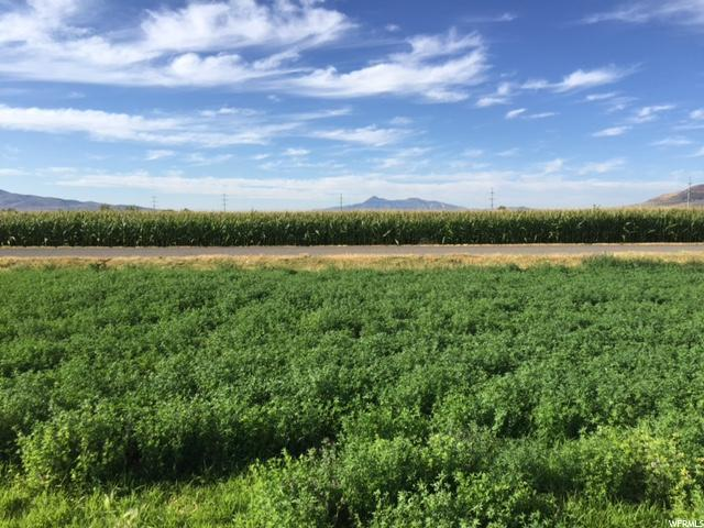 Land for Sale at 5079 W 8800 N 5079 W 8800 N Elwood, Utah 84337 United States