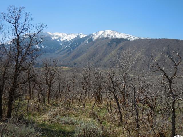390 E 1200 Elk Ridge, UT 84651 - MLS #: 1487823