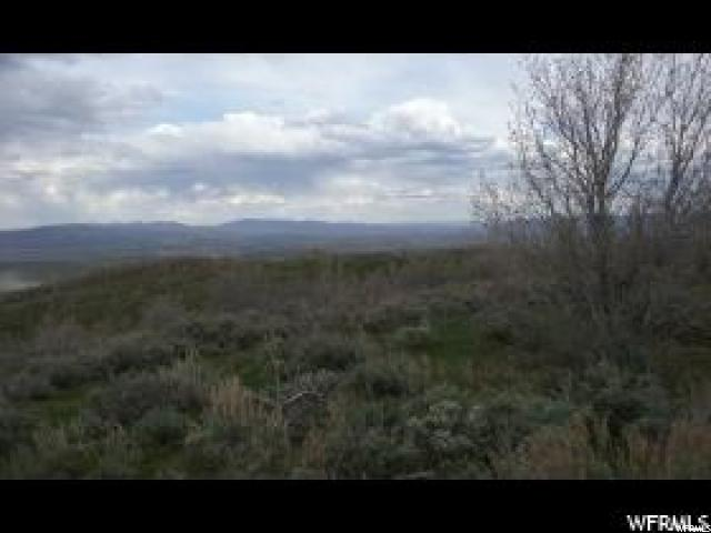 1000 MILES CANYON RD Montpelier, ID 83254 - MLS #: 1489099