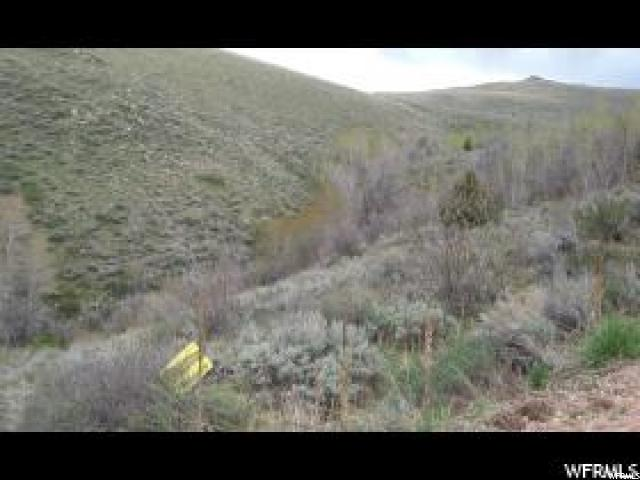 900 MILES CANYON RD Montpelier, ID 83254 - MLS #: 1489101
