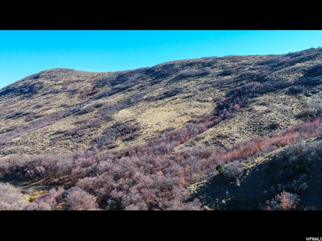 15729 S ROSE CANYON RD Herriman, UT 84096 - MLS #: 1489646