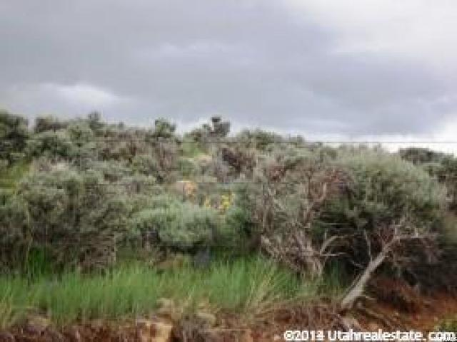 Additional photo for property listing at 100 S INDIAN CREEK Road 100 S INDIAN CREEK Road St. Charles, Idaho 83272 United States