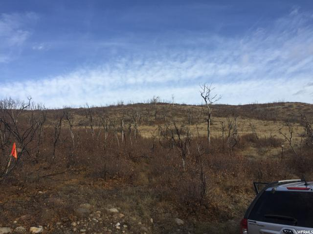 85 W ELK RIDGE Indianola, UT 84629 - MLS #: 1490262