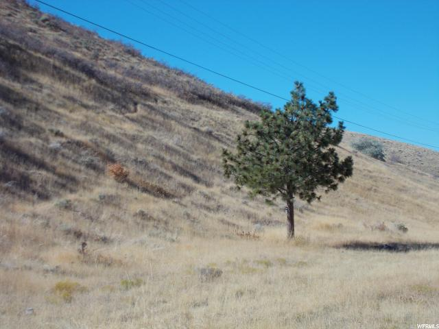 Additional photo for property listing at 1070 E SETTLEMENT CANYON Road 1070 E SETTLEMENT CANYON Road Tooele, Utah 84074 United States