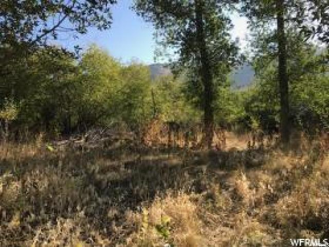 Additional photo for property listing at 2179 EAST SHORE Road 2179 EAST SHORE Road St. Charles, Idaho 83272 États-Unis