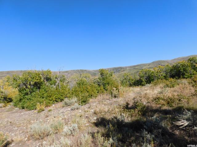 9728 E RIDGE PINE DR Heber City, UT 84032 - MLS #: 1493880