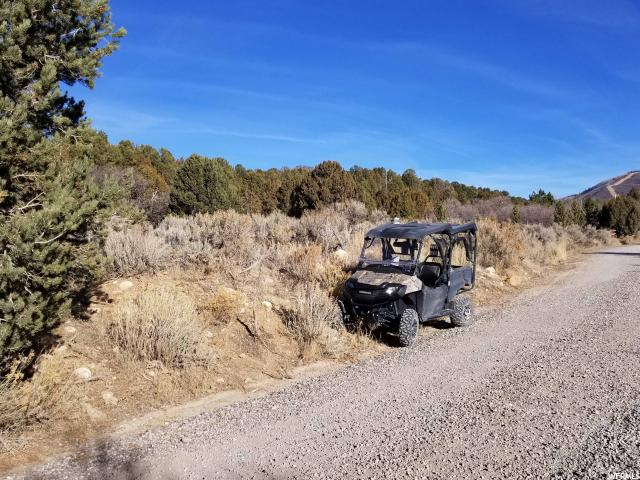 Additional photo for property listing at 11000 E 36500 N 11000 E 36500 N Indianola, Utah 84629 Estados Unidos