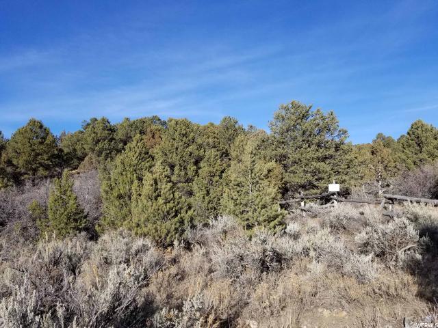 Additional photo for property listing at 11000 E 36500 N 11000 E 36500 N Indianola, Utah 84629 United States