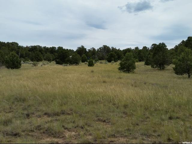 Land for Sale at N/A N/A Fruitland, Utah 84027 United States