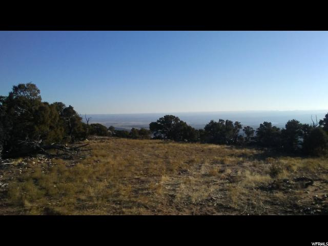 Additional photo for property listing at Address Not Available  Talmage, Utah 84073 United States