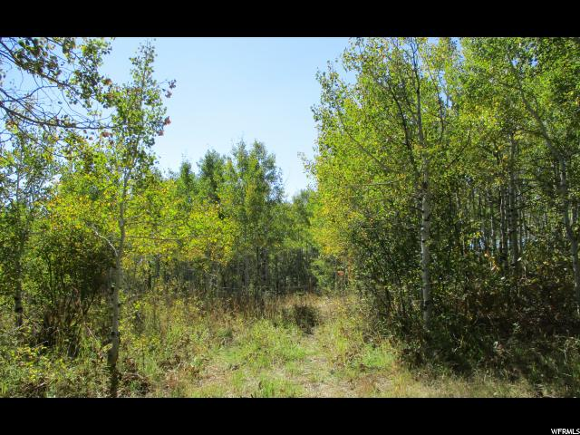 7640 STAUFFER CANYON RD Montpelier, ID 83254 - MLS #: 1495250