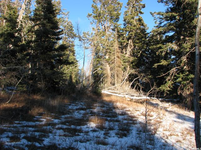 123 N SKYLINE DRIVE Fairview, UT 84629 - MLS #: 1495491