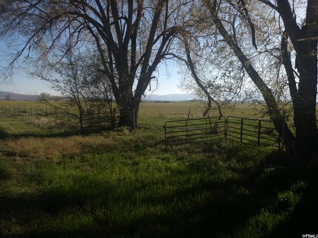Land for Sale at 14000 N 4000 E HWY 14000 N 4000 E HWY Chester, Utah 84623 United States