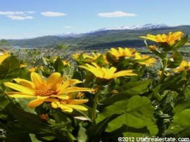 Land for Sale at 3639 MIDDLEFORK Road 3639 MIDDLEFORK Road Eden, Utah 84310 United States