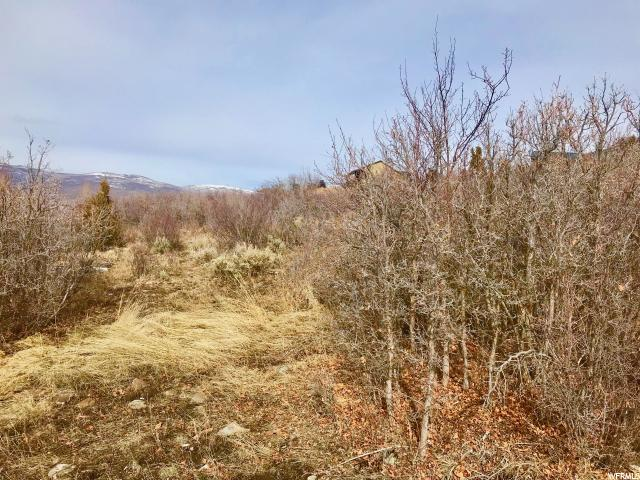 41 SPLENDOR VALLEY RD Kamas, UT 84036 - MLS #: 1503131