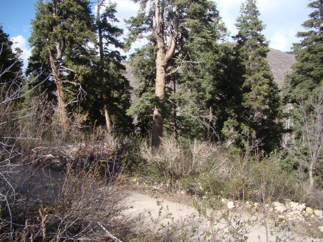 23865 N DAVIS RIDGE DRIVE Fairview, UT 84629 - MLS #: 1503537