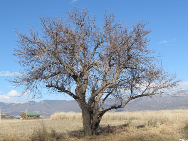 Farm / Ranch / Plantation for Rent at 22342, 22342X, 22347, 8245 19400 8245 19400 Mount Pleasant, Utah 84647 United States