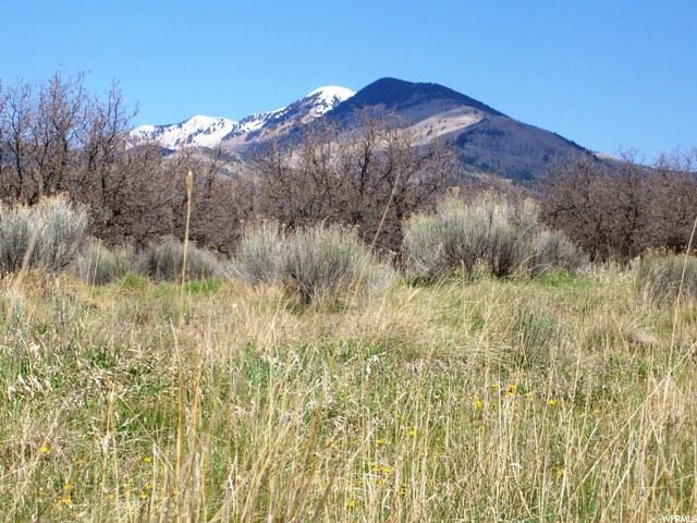 土地,用地 为 销售 在 Address Not Available La Sal, 犹他州 84530 美国