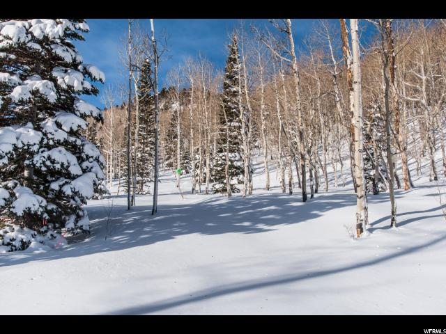 Terrain pour l Vente à 95 WHITE PINE CANYON Road 95 WHITE PINE CANYON Road Park City, Utah 84060 États-Unis