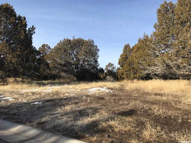 2303 E LA SAL PEAK (LOT 508) DR Heber City, UT 84032 - MLS #: 1506473