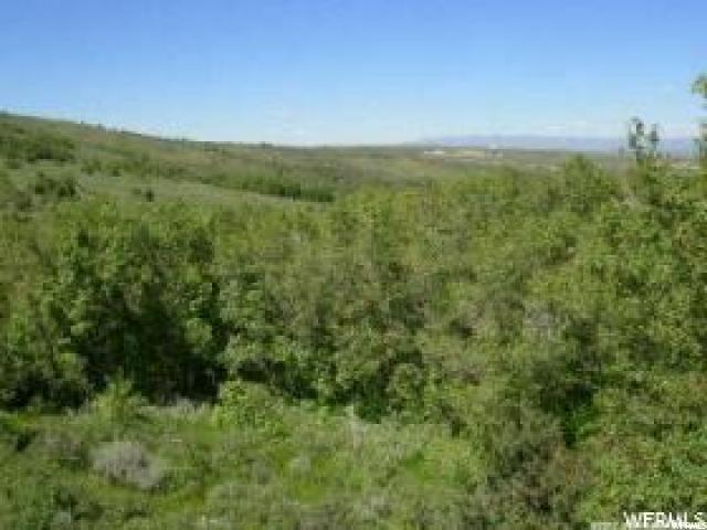 284 COLDSPRINGS DR Fish Haven, ID 83287 - MLS #: 1506726