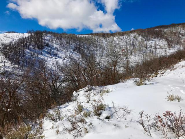 26 KIMBALL CANYON RD Park City, UT 84098 - MLS #: 1507978