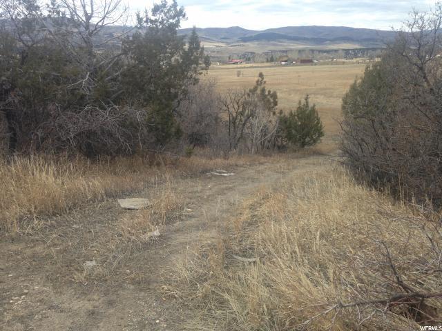 أراضي للـ Sale في 24769 N 11940 E 24769 N 11940 E Fairview, Utah 84629 United States