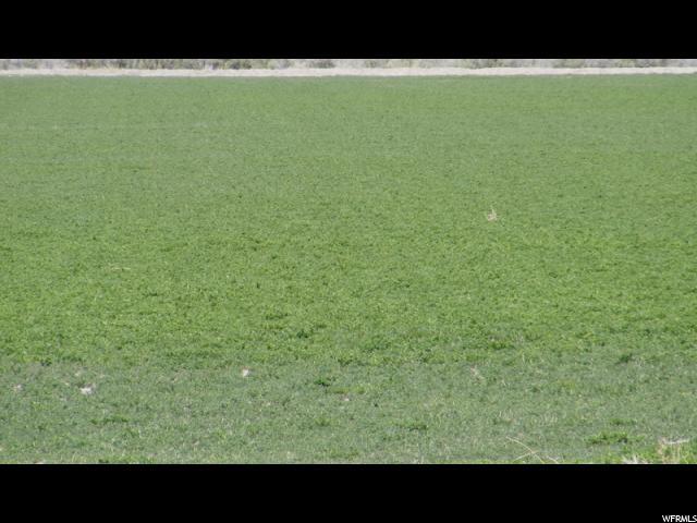 Ферма / ранчо / плантация для того Аренда на HD 5530, 5500 HWY 257 5500 HWY 257 Deseret, Юта 84624 Соединенные Штаты
