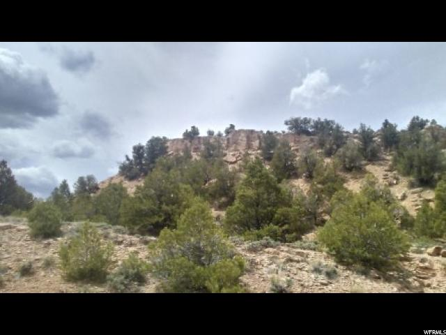 ---, FRUITLAND, UT 84027  Photo 16