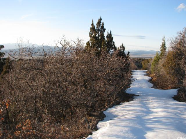 128 MEADOW LANE Mount Pleasant, UT 84647 - MLS #: 1517264