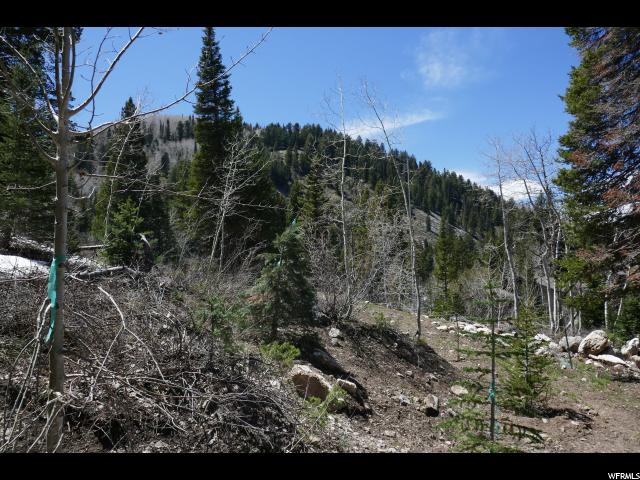 11340 E CHURCH RD Solitude, UT 84121 - MLS #: 1525975