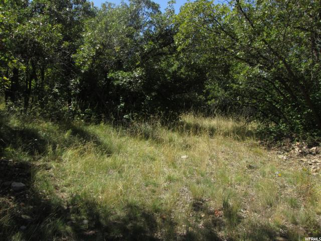 1055 S LOAFER DR Woodland Hills, UT 84653 - MLS #: 1526988