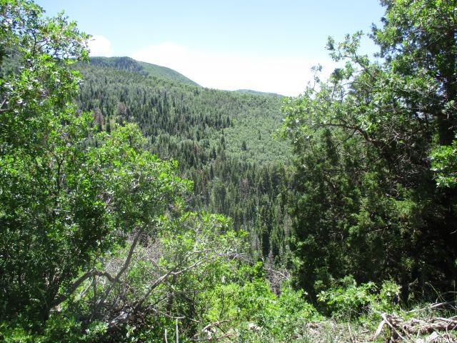 19900 N 14500 Mount Pleasant, UT 84647 - MLS #: 1531864