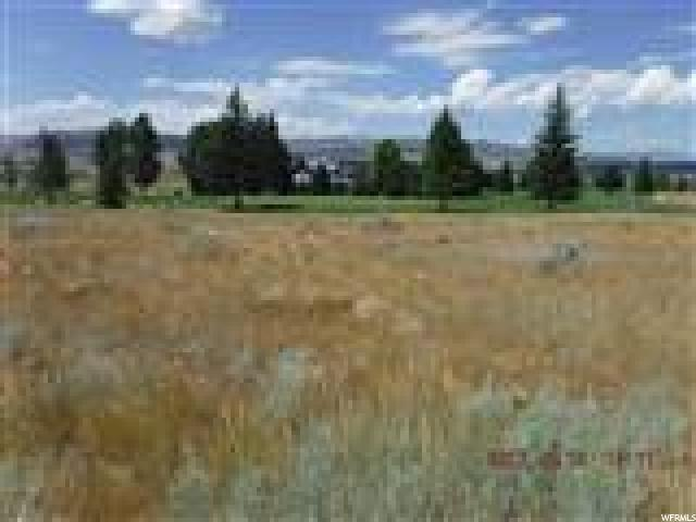 57 E SPORTS HAVEN Drive Fairview Utah 84629 Land for Sale