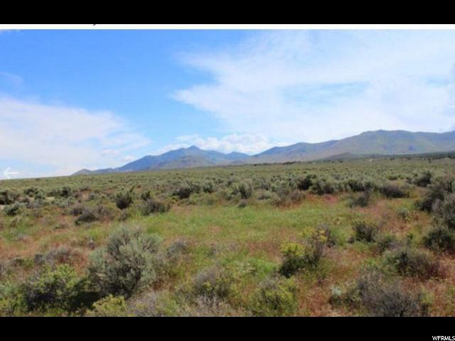 Grouse Creek, Utah 84313, ,Agricultural,For sale,1544687