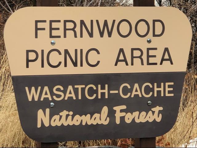 3343 E FERNWOOD FERNWOOD Layton, UT 84040 - MLS #: 1569034