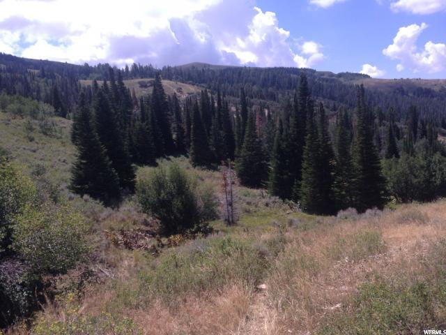 6 Sawtooth Mts